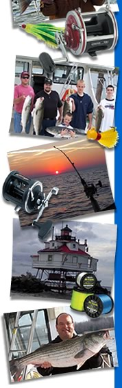 photo collage of fishing trips